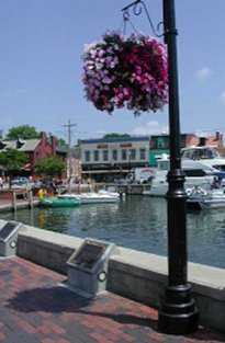 Annapolis City Dock